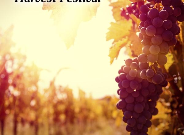 harvest_fest_600x629