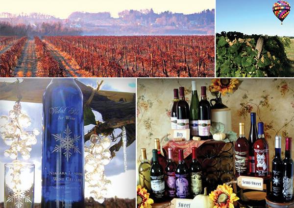 Wine Tours Niagara Falls Usa