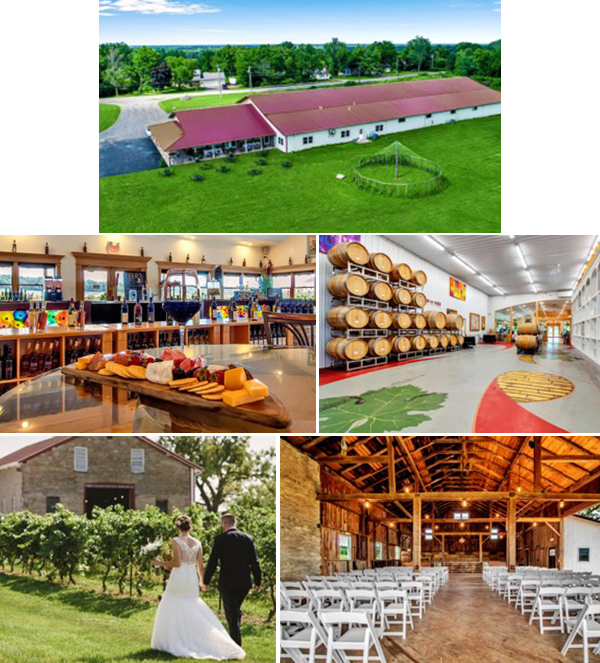 image collage of freedom run winery